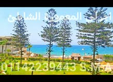 in Alexandria apartment First Floor for rent