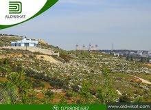 ارض للبيع في بدر الجديدة بمساحة 750 م