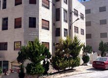 excellent finishing palace for rent in Amman city - Jubaiha