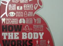 How The Body Works : The facts visually explained