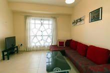 دبي ابراج بحيرات الجميرا JBR - غرفة وصالة مفروشة سوبر لوكس - مع بلكونة ايجار شهري