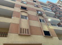 امتلك شقة بارخص سعر في مصر فقط 3000 للمتر جاهزة للاستلام (3)