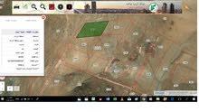 4 دونم للبيع في صروت بالقرب من بيرين حوض حدد