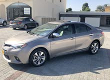 For sale 2015 Gold Corolla