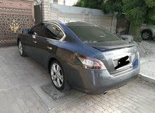 ماكسيما وكالة عمان 2012 المالك الاول