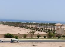 شاليه يري بحر في خليج مكادي الغردقة