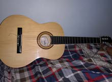 Guitar condor