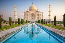 تأشيرة الهندية