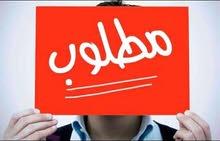 غزة مطلوب طقم نوم 0595866846