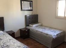 Al Faisaliah neighborhood Jeddah city - 0 sqm apartment for rent