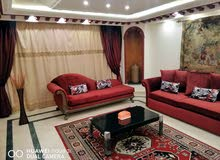 Furnished apartment in Cairo for rent
