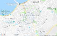 سيدى بشر شارع محمد نجيب بحرى واجهه عموميه
