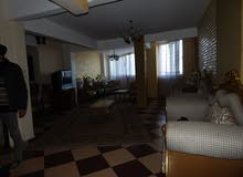 for rent in Alexandria Stanley apartment