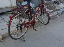 دراجة هوائية (فلبس)