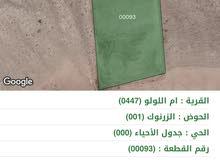 42c3064e498f8 اراضي للبيع   قطعة ارض للبيع   قوشان اراضي استثمارية   الأردن
