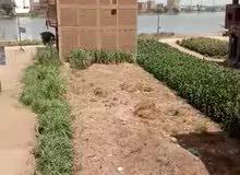 ارض بكورنيش الحاجبي للبيع بميت غمر 140 متر مربع