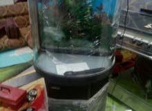 حوض سمك جديد غير مستعمل