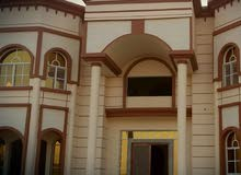 Villa property for rent - Al Ain  directly from the owner