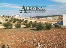 ارض للبيع في اجمل مناطق الظهير بمساحة 762 م ذات موقع مميز و مطل