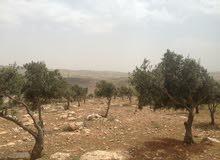 قطعة ارض مميزة , تلامس السماء على بعد3  كم واحد من عمان