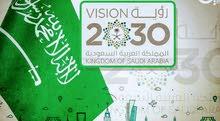 [مشاريع صناعية،توافق رؤية 2030]                                    (أستشاري )