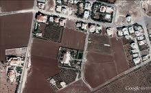 ارض 975 م اليادودة تلعة الذهب خلف ايكيا بالقرب من قصر محمد الوكيل وقصور أبو جابر