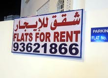 apartment and rooms for rent