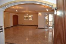Ground Floor apartment for rent - Nasr City