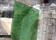 مزرعه استثمارية للبيع في جينين