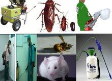 0544962312مكافحه حشرات جميع أنواع الحشرات وتسليك مجاري وتنظيف شقق وفلل