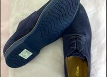 Clarks Navy shoes