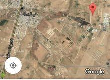 ارض للبيع 5 دونم  في زويزا
