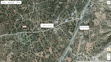 ارض للبيع  الرجبان.1700 متر مربع   او استبدال بامنزل في طرابلس0918040559