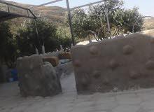 السلط يرقا منطقه المعلقه مطله على ماحص. مسوره عليها بناء غرفه وحمام وكهرباء وتنك