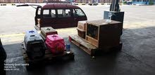 كلاب جيرمن شو لاين جاهزين للشحن