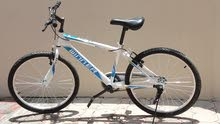 Used Mountain bicycle MTB City Bike Winner Brand in great condition for sale