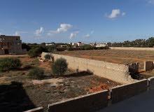 يمكن الدخول إليه من جميع الاتجاهات شارع الشجر أو شارع الأوربي أو طريق طرابلس