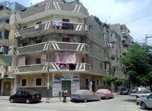 منزل فى موقع متميز بمدينة بنها