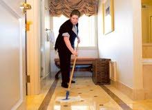 HouseMaid (خادمة المنزل)