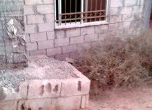 بيت للبيع رجم الشامي وبسعر 60 الف السعر قابل للتفاوض