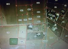 ارض مرتفعة ومميزة 5 دونمات بين منجا و جلول منطقة مزارع وشاليهات  بجانب حلبة منجا الدولية.
