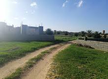 طريق الرملة منطقة الدرادرة خلف مشروع الدواجن سابقا