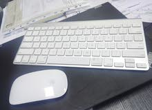 Apple wireless mouse and keyboard.