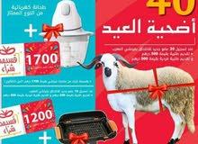 اضحية العيد +شوية كهربائية