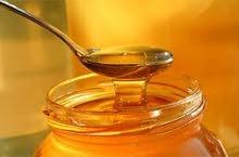 استشارى مناحل عسل النحل الطبيعى