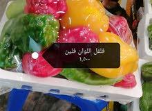 السعد للخضروات والفواكه الطازجه