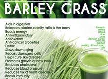 Santey barley