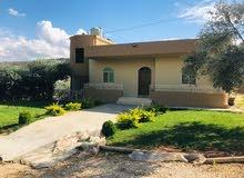 ارض 2400 سهم للبيع مع 3 بيوت جاهزة للسكن