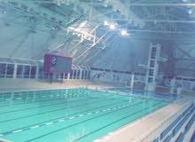 مدرب ومنقذ سباحة