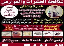 مكافحة حشرات الكويت بأرخص الأسعار